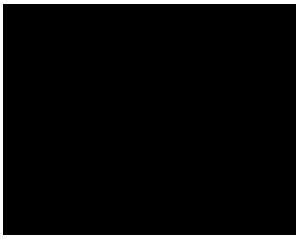 logo-PITOT_CDA0620-01